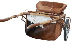 Custom Horse Carts