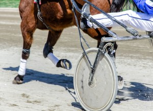 horse cart restoration